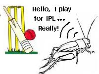 FAKE IPL PLAYER Steals the show of IPL