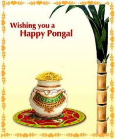 Happy Pongal 2014 Wishes